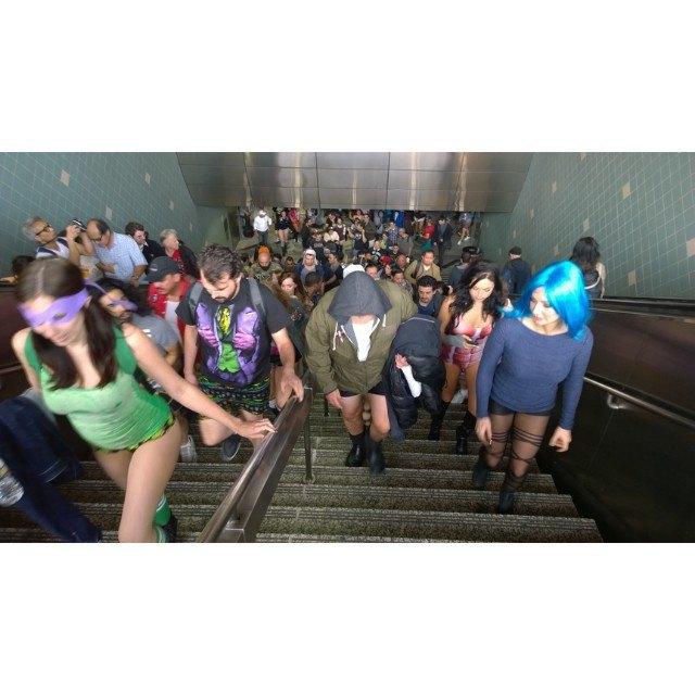 Флешмоб «В метро без штанов» в снимках Instagram. Изображение № 26.