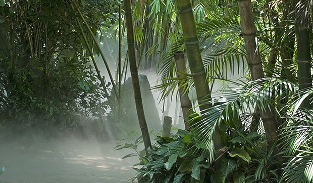 Дизайн от природы: Городской симбиоз и биосвет. Изображение № 5.