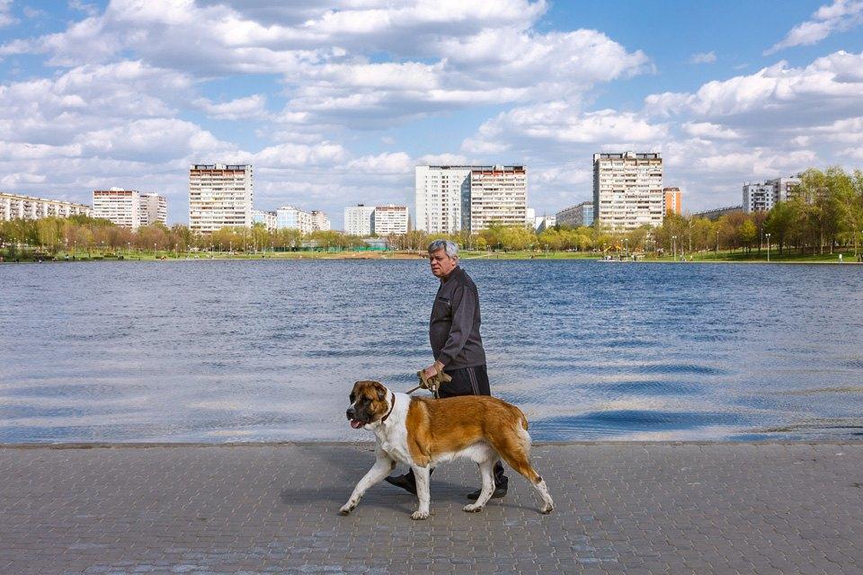Огни моего гетто: Жители Гольянова освоём районе. Изображение № 12.