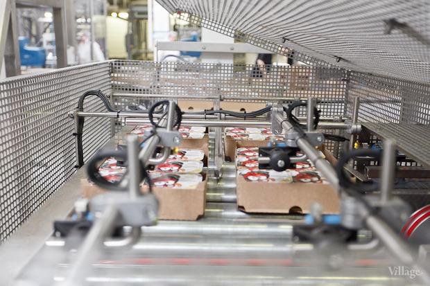 Фоторепортаж: Как делают йогурты на молочном заводе. Изображение № 48.
