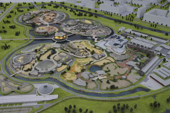 Горожанам покажут проект будущего зоопарка в Юнтолово. Изображение № 1.