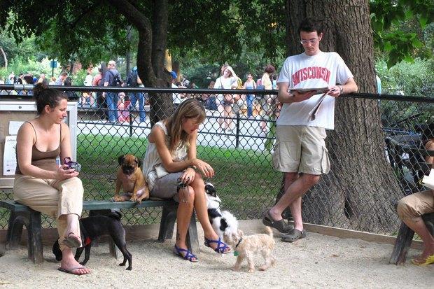 Иностранный опыт: Как устроены площадки для выгула собак в 5 городах мира. Изображение № 3.