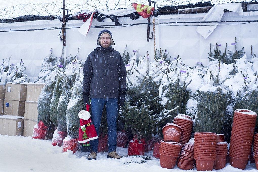 Бизнес на «ЭкоЁлках»: Встретить Новый год, несрубив дерева. Изображение № 2.