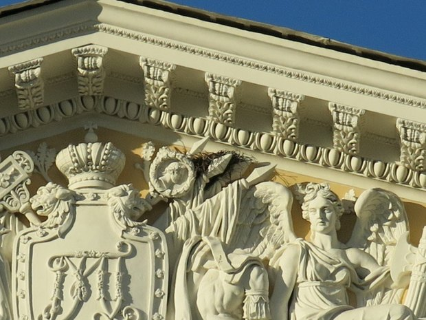 Воронье гнездо нафронтоне Русского музея. Изображение № 1.