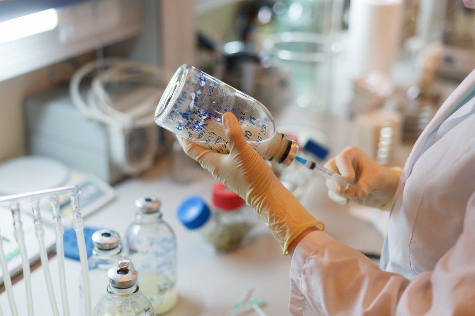 Микробиолог Андрей Шестаков— ополезных микробах, вреде молока ифинансировании науки. Изображение № 8.