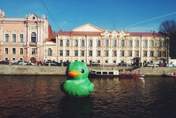 По Фонтанке плавает гигантская зелёная утка. Изображение № 2.