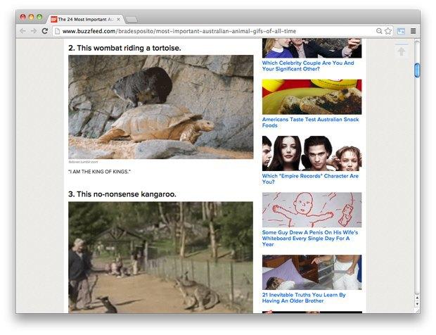 Австралийские животные, количество сахара вколе ирезиденция Пшонки. Изображение № 1.