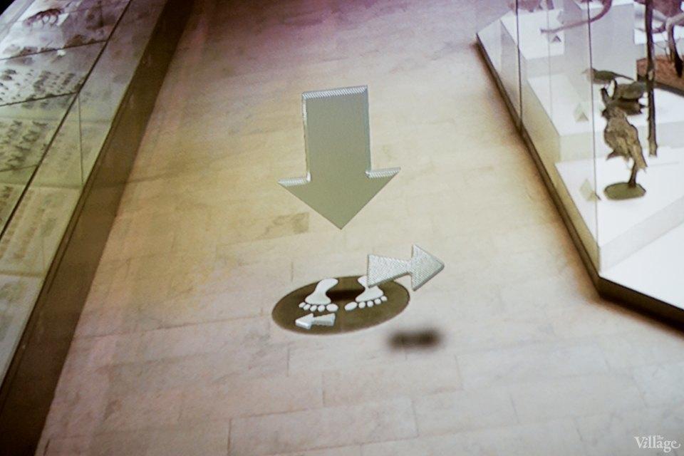 Перемены в Дарвиновском музее: «Можно бегать, прыгать и шуметь». Изображение № 17.