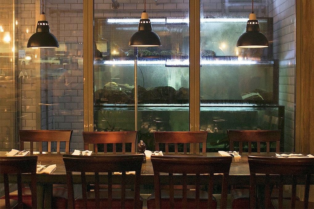Ресторатор двух столиц: Чем отличается еда в Москве и Лондоне. Изображение № 6.