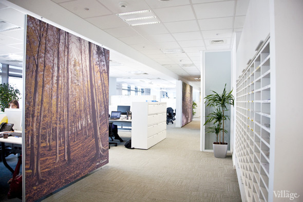 Офис недели (Москва): Philips. Изображение № 25.