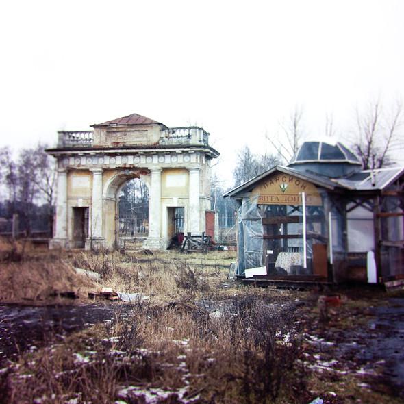 В зоне риска: Усадьба Гребнево. Изображение № 12.