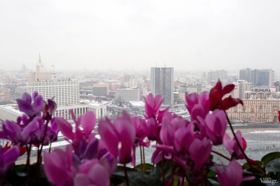 Лучший вид на этот город: 7 смотровых площадок вМоскве. Изображение № 42.
