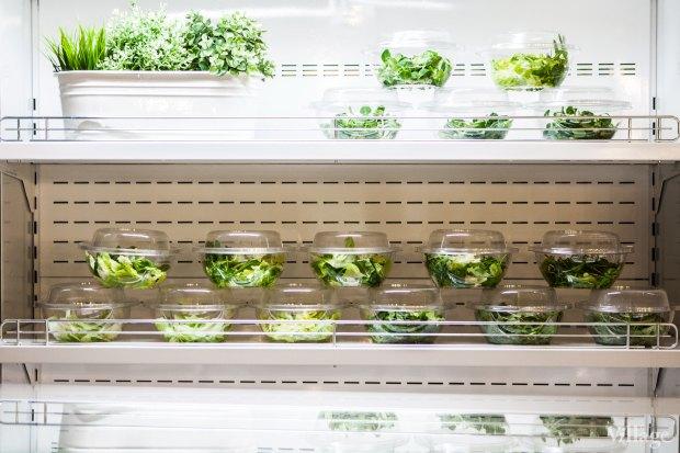 Салат-бар Fresh&ko. Изображение № 2.