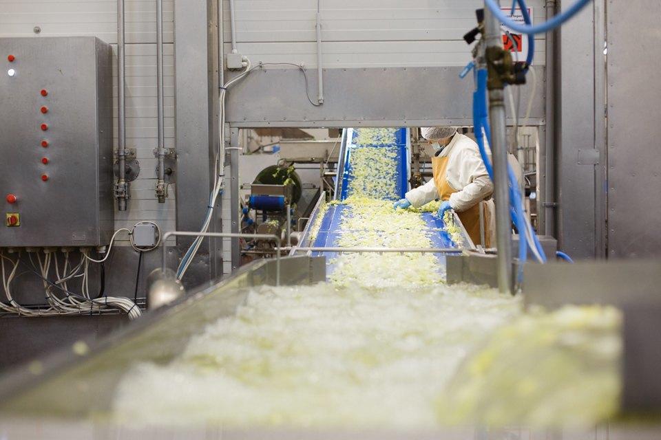 Производственный процесс: Как делают салаты для McDonald's. Изображение № 16.