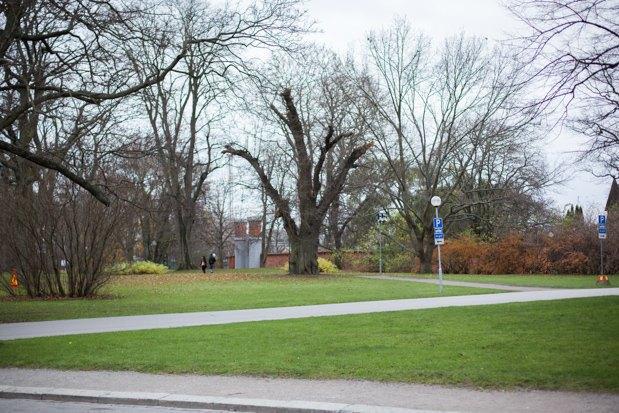 Главный архитектор Стокгольма: «Первые в городе — пешеходы, а не автомобилисты». Изображение № 5.