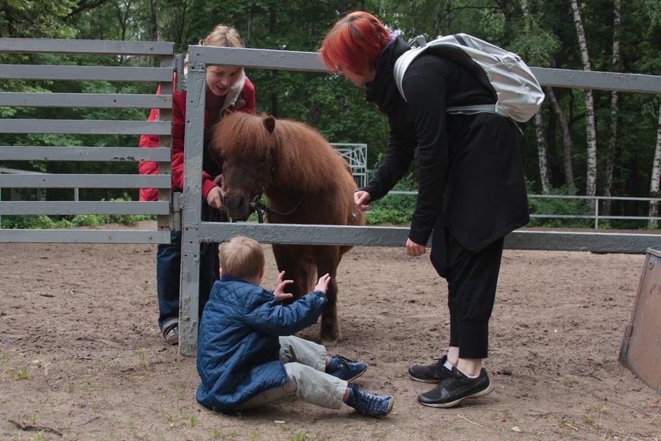 Кони, люди: Как конюшню, помогающую детям-инвалидам, выселяют из парка Горького. Изображение № 2.