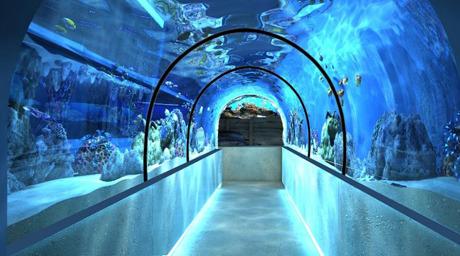Тоннель, рассчитанный на 100 тонн воды. Изображение № 1.