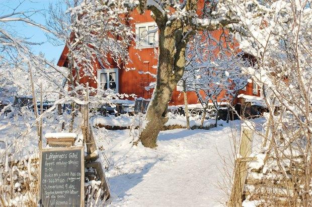10мест в Стокгольме, куда ходят сами стокгольмцы . Изображение № 28.