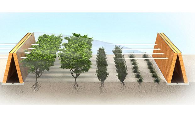 Дизайн от природы: Дом-термитник, жилая дюна и оранжереи в пустыне. Изображение № 23.