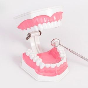 Кровь и зубная паста: Что делать, если болит десна — Здоровье на Wonderzine