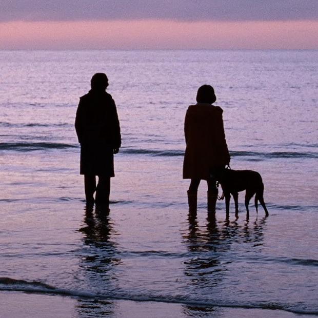 Romantic collection: 100 фильмов о любви по правилам и без