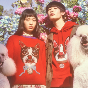 Новая кампания Gucci с умилительными псами