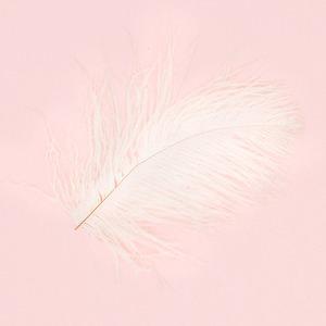 Нейл-арт недели: Перо — Красота на Wonderzine