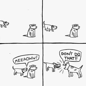 На кого подписаться: Веселые комиксы о жизни собак и их хозяев — Жизнь на Wonderzine