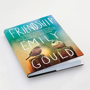 «Дружба» Эмили Гулд  как результат всеобщего лицемерия — Мнение на Wonderzine
