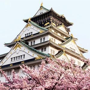 На кого подписаться: Медитативные видеозарисовки о Японии — Развлечения на Wonderzine