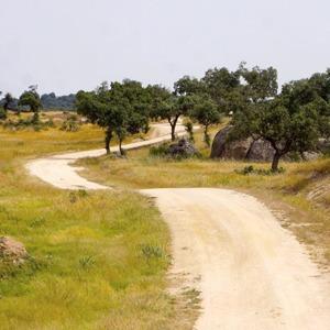 Как я прошла тысячу километров по Испании за 33 дня — Путешествия на Wonderzine