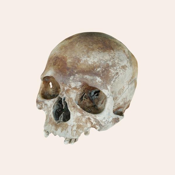 В закладки: 3D-модели одежды, предметов  и останков XVI века — Жизнь на Wonderzine