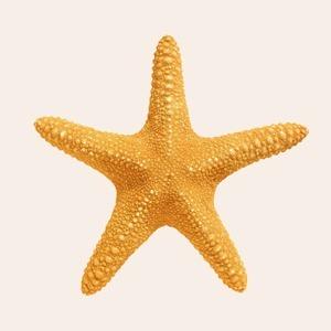 Плавали — знаем: 13 мифов о купании, в которые пора перестать верить — Спорт на Wonderzine