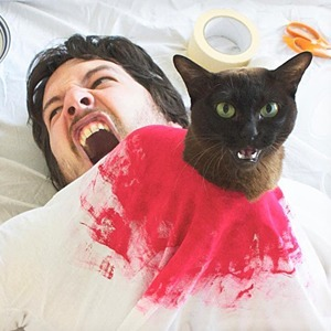 На кого подписаться: Хозяин и кот инсценируют кадры из кино — Развлечения на Wonderzine