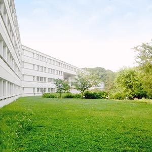 Лучшие женские университеты мира — Жизнь на Wonderzine