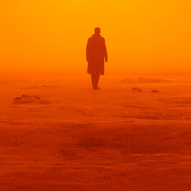 Фетиш Вильнёва: Стоит ли смотреть сиквел «Бегущего по лезвию» — Кино на Wonderzine