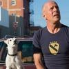 Вышел трейлер блокбастера о краже собаки с Брюсом Уиллисом