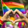 Бразильские активисты выступили против «лечения» геев