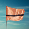 У сборной беженцев появился собственный флаг и гимн