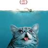 В сети появился трейлер фильма о котах-мемах