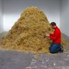 Итальянский художник решил найти иголку в стогу сена