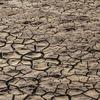 2016-й стал самым жарким годом в истории