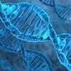 У здорового ребенка впервые расшифровали геном еще до рождения