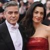 У Амаль и Джорджа Клуни родятся близнецы