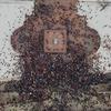 В городах России прошла «Забастовка избирателей»