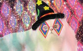 Клоуны остались: Cirque du Solyanka на четырёхлетии московского клуба