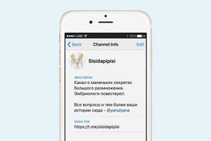 На кого подписаться: Telegram-канал о сексе в мире животных
