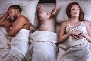 В новой кампании PETA животные мешают людям заниматься сексом