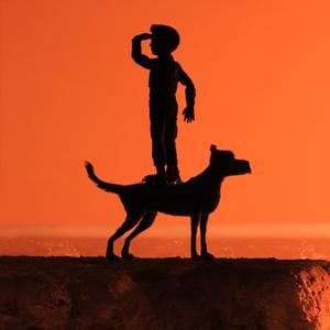 Преданней собаки нету существа: Почему нужно смотреть «Остров собак» Уэса Андерсона