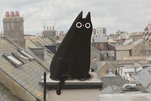 На кого подписаться: Милые животные иллюстратора Джона Бонда